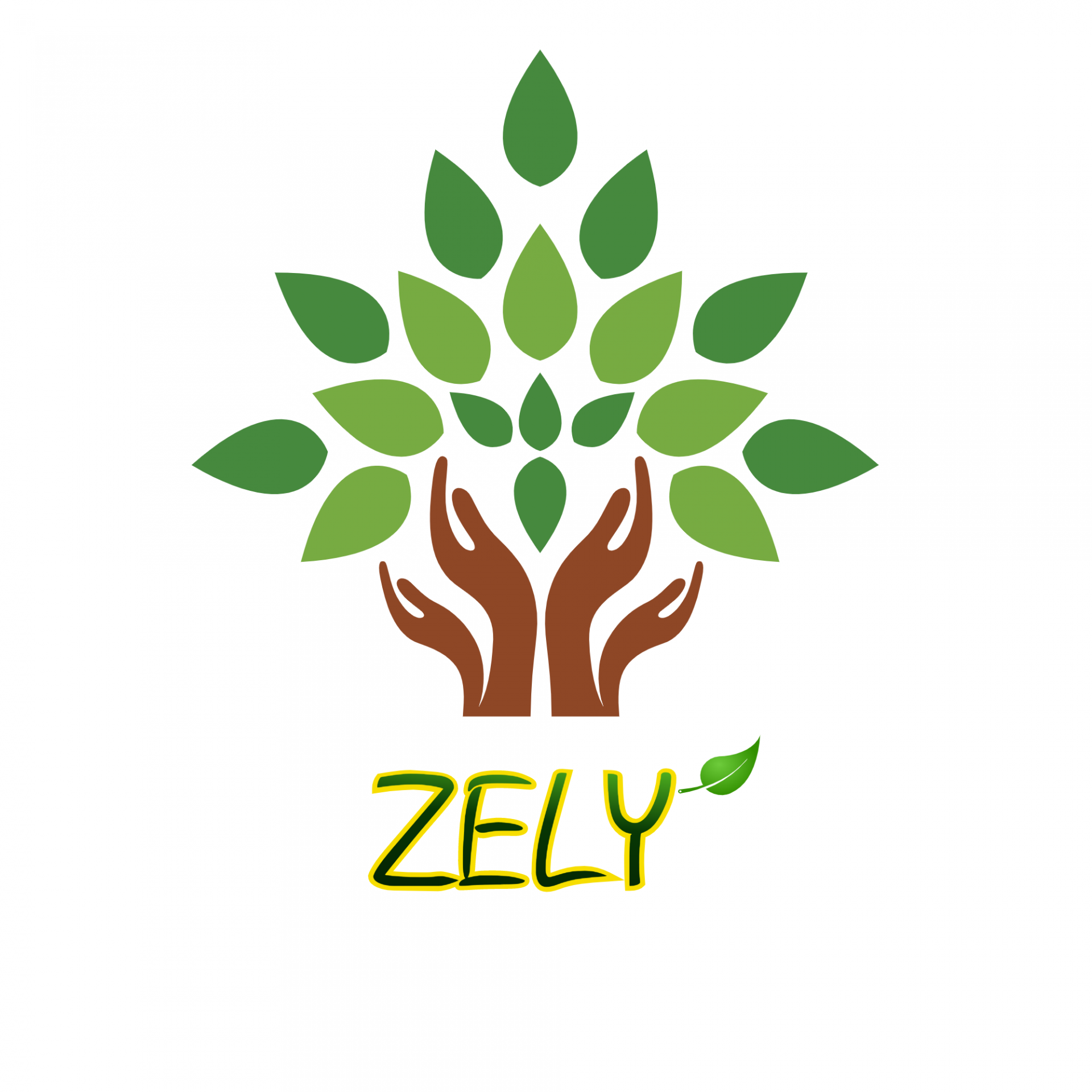 Logo Công ty TNHH Zely