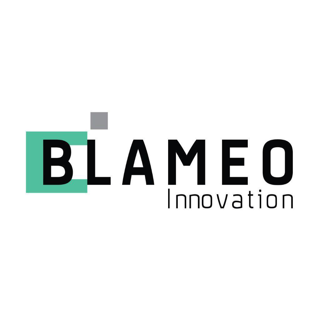 logo công ty cổ phần công nghệ blameo việt nam