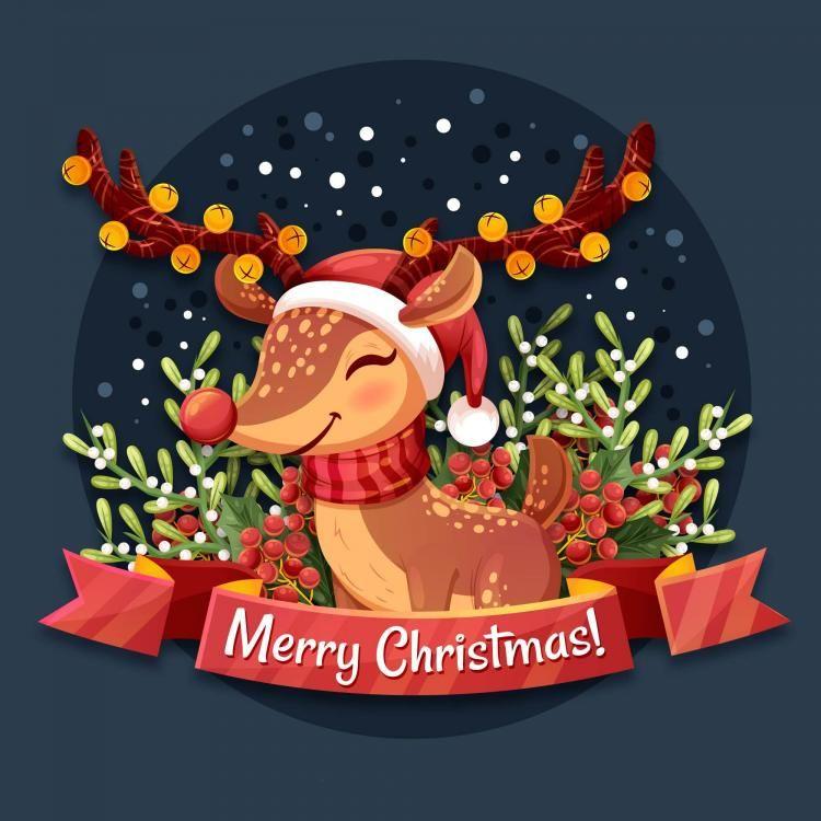 Giáng sinh diễn ra vào cuối tháng 12