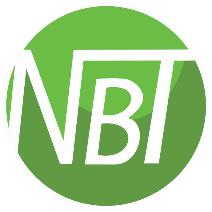 Logo Nam bảo tín